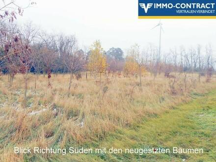 Waldgrundstück in Safariparknähe