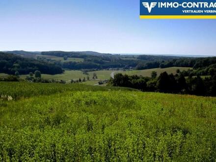 Herrlicher Ausblick - Ruhe und viel Grün auf einer Anhöhe im schönen Südburgenland