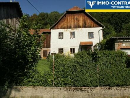 Alter Meierhof mit arrondierten Flächen