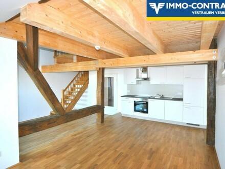 Sonnige Loggia - Drei-Zimmerwohnung in herrlicher Schlossatmosphäre - Erstbezug
