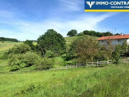 Traumlage mit herrlicher Aussicht! - Schönes Landhaus mit zwei Wohneinheiten - Pferdehaltung erlaubt!