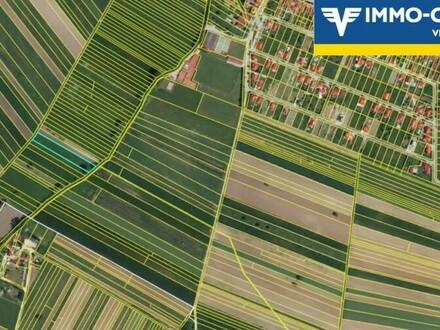 VERLASSENSCHAFT - Landwirtschaftliches Ackerland