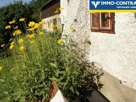 Meierhof mit 12 ha arrondierten Grundstücken