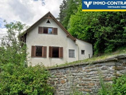 Waldheimat und Joglland - Gemütliches Haus - Sanierungsbedürftig