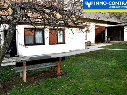 Idyllische, ruhige Dorflage mit eingezäuntem Garten und Obstbäumen - Sofort bezugsbereit