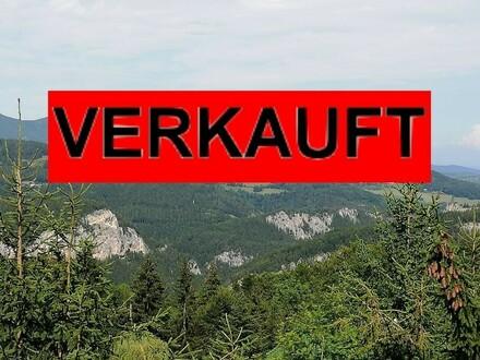 RESERVIERT DURCH HR. JÜRGEN HAHNEKAMP