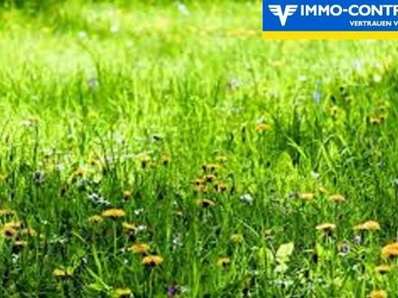 Grundstück in schöner Grün- und Ruhelage