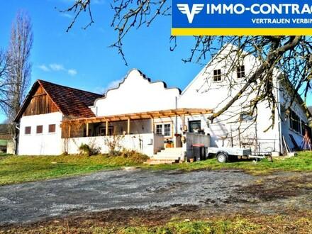 Sonnig - Den ganzen Tag - Schöner, geschmackvoll sanierter Vierkanthof mit Pferdeboxen und Wiese