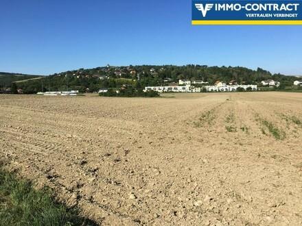 Landwirtschaftlicher Grund auch für Anleger 6.148m²