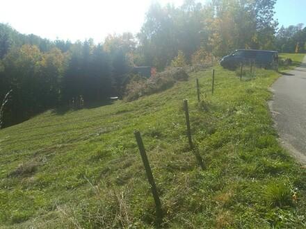 Linz Nähe - großzügiges Grundstück in Hanglage
