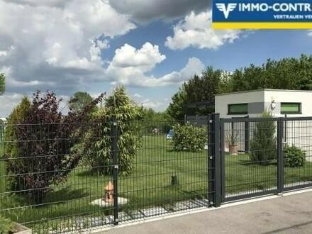 Traumhaftes Grundstück (Kleingarten) mit Anningerblick