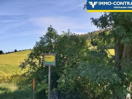 Grundstücke am Eichkogel / Mödling