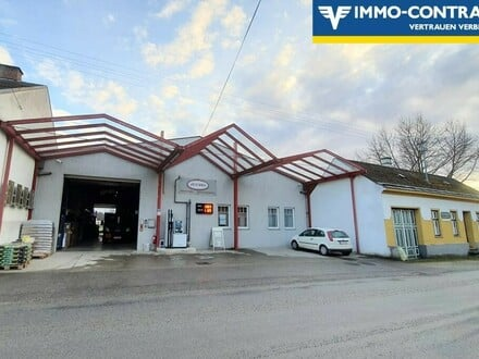 Lagerhalle / ideal auch als Oldtimer-Garage