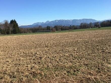 Ackerfläche/Grünland