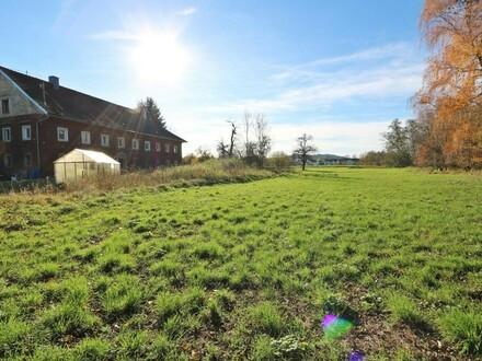 Riesen Grundstück in indyllischer Lage - Althausbestand (unbewohnbar)
