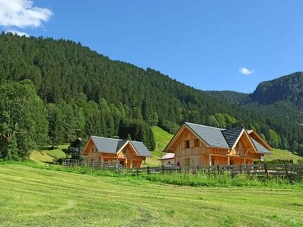Eine traumhafte Ferienhütte in Gosau