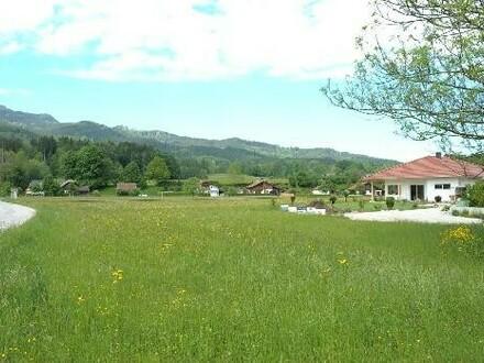 Mischbaugrund in sonniger Lage in Scharnstein - Gebirgsblick - eben