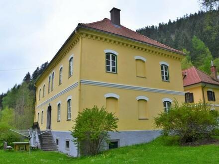 """Geschichtsträchtiges """"Doktorhaus"""" aus dem 19. Jhd"""