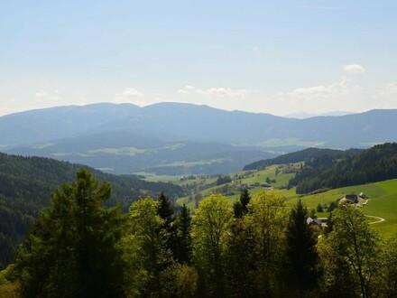 Doppelbaugrund auf der Oberberger Alm