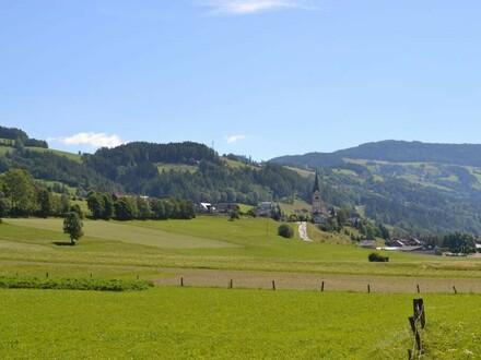 TOP-ANGEBOT Ferienwohnung am Kammersberg