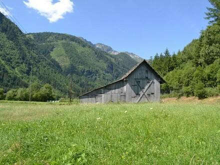Landwirtschaftlich nutzbare Fläche