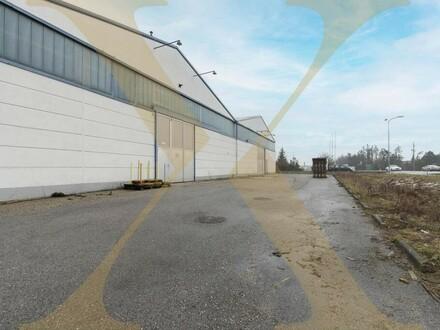 Beheizte Lagerflächen samt Büros und asphaltierter Freifläche ab sofort in Marchtrenk zu vermieten!