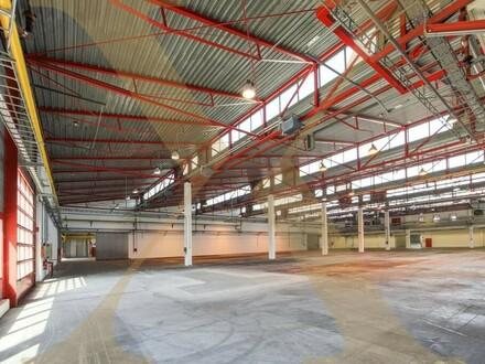 ZUKUNFTSPARK+   Lager-/Produktionshallen samt Büroflächen in Tulln zu vermieten - Erweiterungsmöglichkeit gegeben