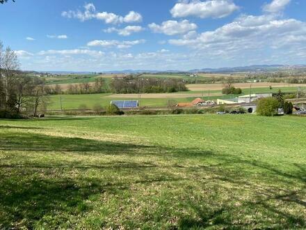 Landwirtschafliche Nutzflächen Nähe Katsdorf für Bauern, Investoren oder Naturliebhaber