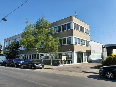 Provisionsfreier Showroom/Büroetage im Süden Wiens - Miete 1230 Wien
