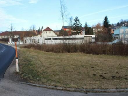 Großes Baugrundstück in Neuhofen