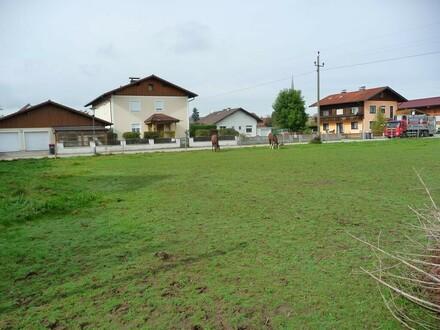 Sonniges, freundliches Baugrundstück in Siedlungsg
