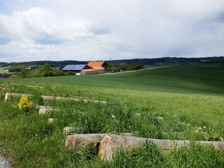 Ackerland mit angrenzendem Nadelwald
