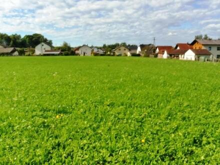 Baugrund Ranshofen bei Braunau 5