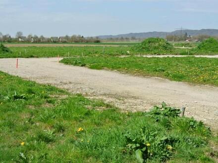 Baugrundstücke in neuem Siedlungsgebiet zwischen Braunau und Ranshofen