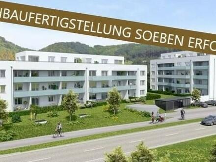 Steyregg: PENTHOUSE mit ca. 65m² Wohnfläche + ca. 45 m² TERRASSE - IHR NEUBAU-Wohntraum im WOHNPARK Steyregg - Rohbaufertigstellung…