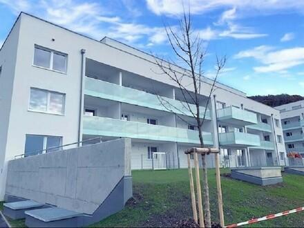 Steyregg: EIGENTUMSWOHNUNG mit ca. 54m² Wohnfläche + X-Large-LOGGIA - IHR NEUBAU-Wohntraum im WOHNPARK Steyregg - Rohbaufertigstellung…