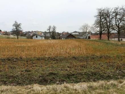 Schöner Baugrund in Stadtnähe - Dorflage