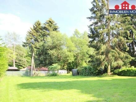 GROSSES ebenes Grundstück am Riederberg