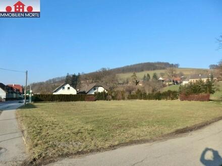 """""""In Kaufabwicklung"""" PARZELLIERUNG: 4 EBENE BAUGRÜNDE - KEINE BAUVERPFLICHTUNG"""