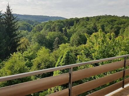 Mietwohnung in Südaussichtslage mit Balkon