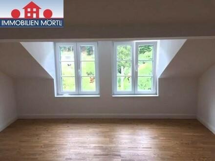 Dachgeschoss - Garconniere in Jahrhundertwendevilla