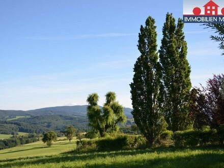 Großzügiges Einfamilienhaus mit traumhaftem Panoramablick