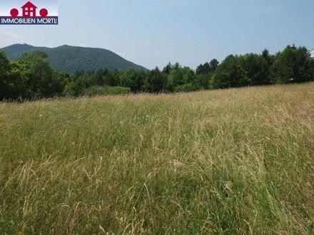 Villengrundstück am Schutzgebiet Natura 2000