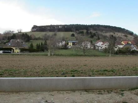 3 Zimmer Erstbezug mit Terrasse und Eigengarten in Sieghartskirchen