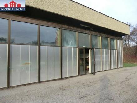 LAGERHALLE EUR 8.00/m² LAGERFLÄCHE LAGER