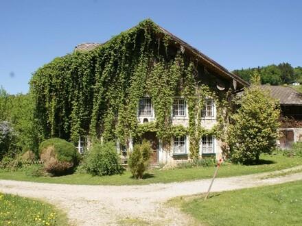 Bauernhaus mit Mühle in Alleinlage