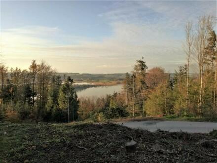Baugrund Mattsee zu verkaufen