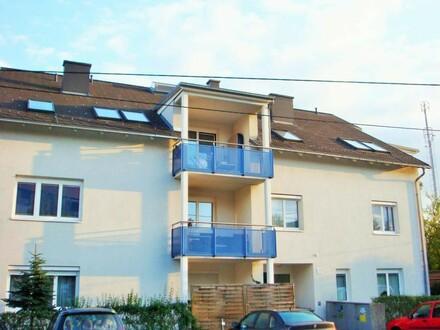 Leistbares Wohnen   2Raum - Wohnung   Perfekt & Preiswert