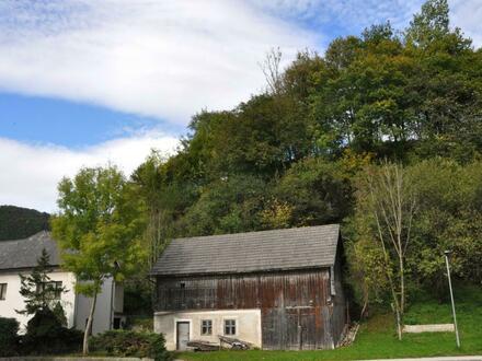 Sacherl im Ennstal für sanierungsfreudige Gönner! - Geschichtsträchtiger Ort mit Obstgarten, Wald u. historischem Erdkeller