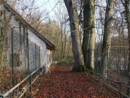 Bastlerhaus direkt an der Steyr sucht neuen Liebhaber!